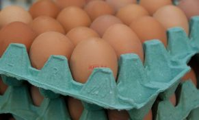 Belgija će tražiti odštetu zbog otrovnih jaja