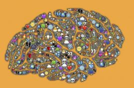 Mozak odlučnih i neodlučnih osoba se veoma razlikuje