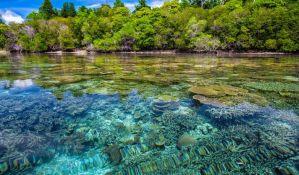 Pacovi ugrožavaju koralne grebene