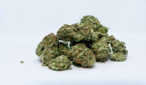 Zaplenjeno dva kilograma droge u Novom Sadu