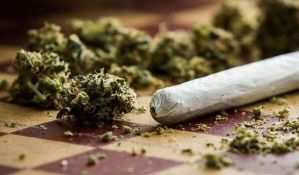 Kod sedmorice zaplenjeno više od 10 kilograma marihuane