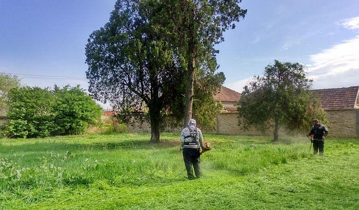 Novi Bečej: U toku sređivanje zelenih površina