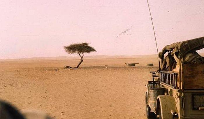Bahati turisti kao štetočine uništavaju znamenitosti