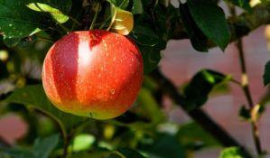Rusiji sumnjiv uvećan izvoz voća i povrća iz Srbije