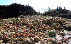 Godišnje se baci 1,3 milijarde tone hrane