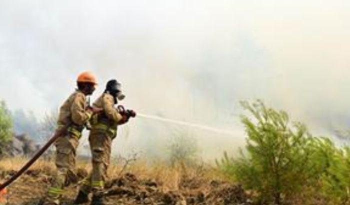 Evakuacija u Antaliji zbog šumskog požara