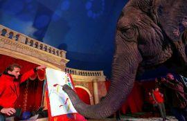 VIDEO: Slonica prodala svoje prve slike