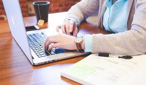 Siva ekonomija na internetu prioritet inspekcije