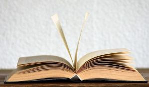 Predavanje posvećeno ženama u književnosti 27. marta u Američkom kutku