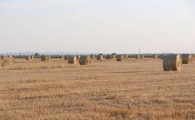 Pančevo: Ratari uskraćeni za hiljadu hektara zemljišta