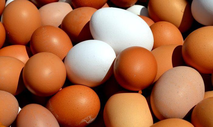 Od čega zavisi boja ljuske jajeta?
