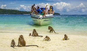 VIDEO: Prijateljski nastrojeni majmuni dočekuju turiste na tajlandskom ostrvu