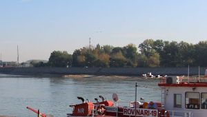 Javni čas o bezbednosti na vodi u subotu između Varadinskog i drumsko-železničkog mosta