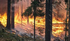 Vanredna situacija u tri valjevska sela zbog požara