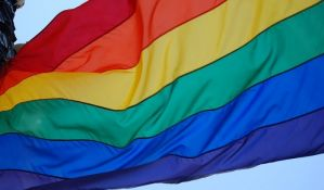 Parada ponosa u Rumuniji, demonstracije zbog referenduma o braku