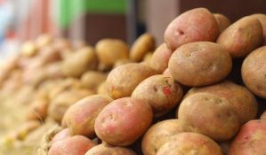 Krompir uvozimo iz Albanije i Amerike, a svoj dajemo u bescenje