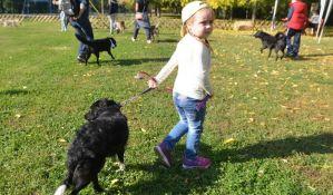 FOTO: Biraju se najlepši psi mešanci u Novom Sadu