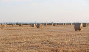 Anketari će od 1. oktobra obilaziti sva poljoprivredna gazdinstva u Srbiji