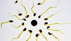 Par dobio blizance spermatozoidima zamrznutim pre 26 godina