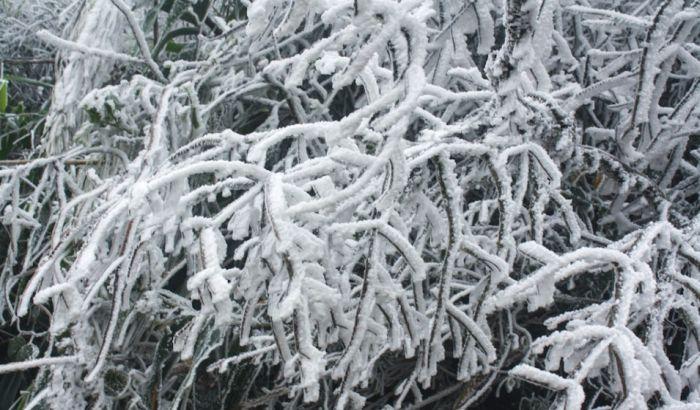 Od hladnoće preminulo više od 60 ljudi