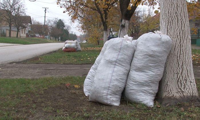 Vrbas: Od ponedeljka odnošenje kabastog i biljnog otpada
