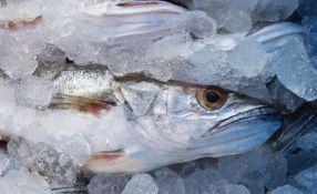 Proizvodnja ribe u Srbiji 25 puta manja od mogućnosti