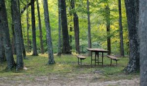 Apel za 1. maj: Ne ložite vаtru blizu šume i ne bаcаjte opuške