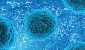 Britanske firme radnicama nude da zamrznu jajne ćelije kako bi se fokusirale na posao