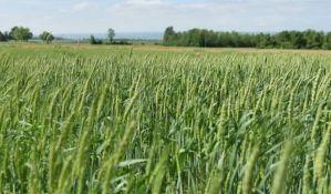 Stranci neće moći da kupuju poljoprivredno zemljiše