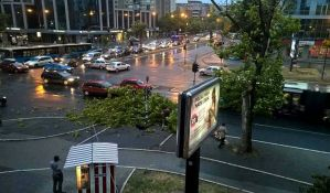 VIDEO: Nevreme lomilo drveće u Novom Sadu