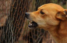 Mokrin: Policajca ujeo pas kad je pokušao da uruči poziv za sud