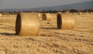 Izgradnja industrije i infrastrukture nauštrb plodnog zemljišta