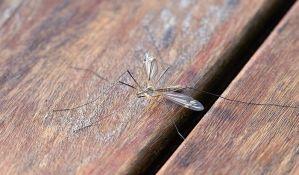 Komarci koji prenose virus zapadnog Nila otkriveni u Pančevu