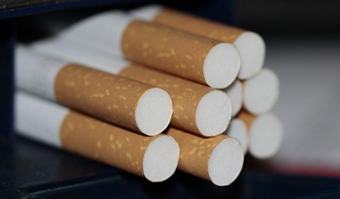 Policija Severne Makedonije sprečila šverc 16,5 tona cigareta iz Srbije