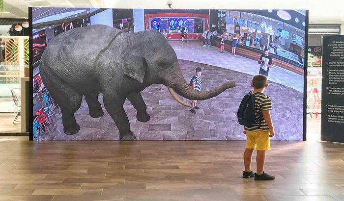 VIDEO: Družite se sa životinjama kroz izložbu
