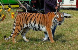 Francuska zabranjuje divlje životinje u cirkusima