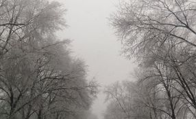 Meteorolog: Bez snega do kraja januara