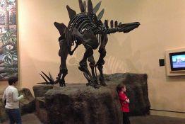 Pronađeni ostaci dinosaurusa stari 130 miliona godina