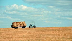 Prostran o ukidanju subvencija za poljoprivrednike: Objašnjenje da je to zbog jeftinijeg goriva je neracionalno