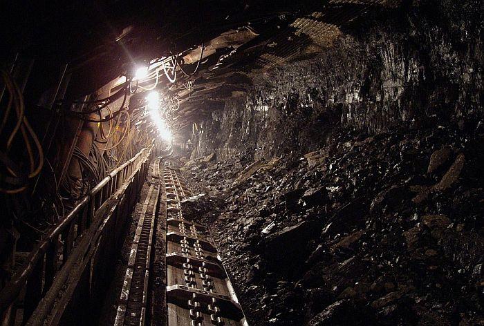 Naslednici od države traže 800 preduzeća, Karađorđevići potražuju više rudnika