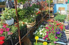Letnji market danas na platou ispred Spensa