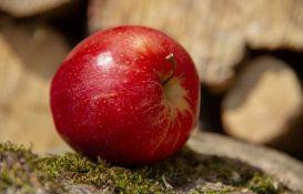 Crvene jabuke polako nestaju