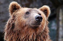 Aljaska: Spasen nakon što je nedelju dana odbijao napade medveda