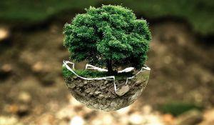 O politici zaštite životne sredine EU u četvrtak u KCNS