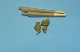 Meštanin Vrbasa uhapšen zbog marihuane