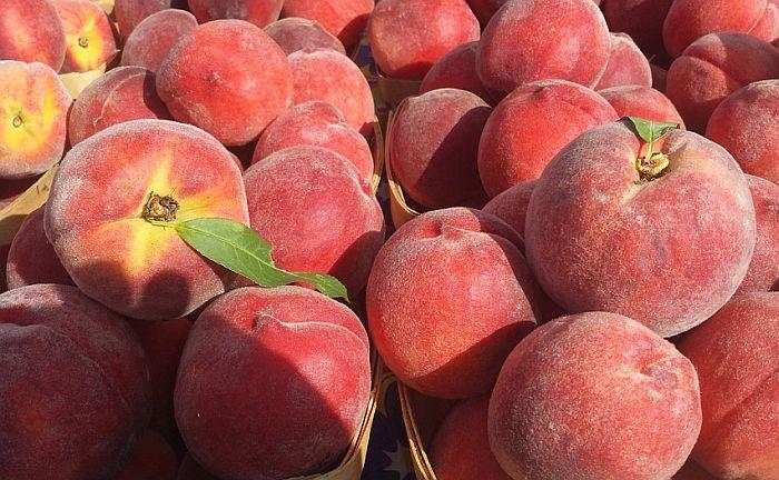 Subotica: Uvozili voće iz Grčke i prodavali ga Rusima kao domaće