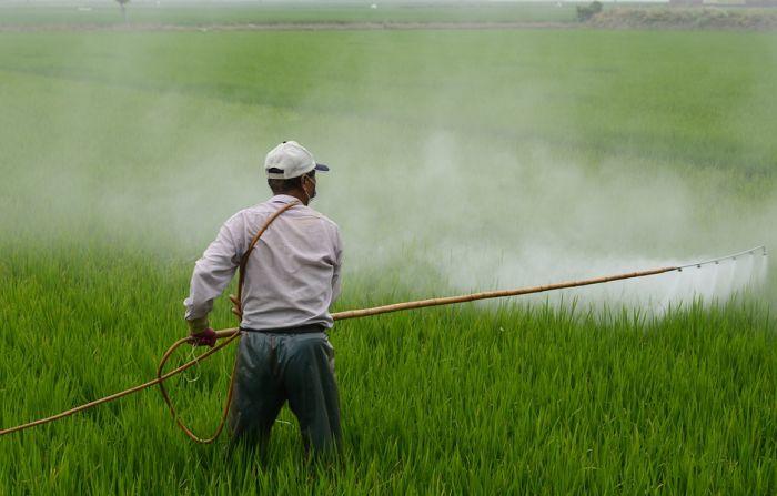 SZO: Zabrana pesticida na Šri Lanki smanjila broj samoubistava za 70 odsto