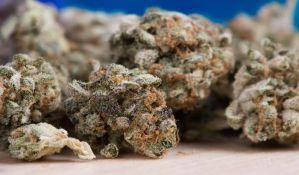 Sprečen šverc tone marihuane iz Albanije u Makedoniju