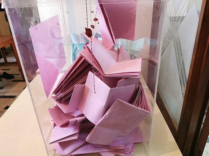 VIDEO Izbori u Šapcu: Prijavljeno davanje novca za glasanje, telefoni GIK-a blokirani