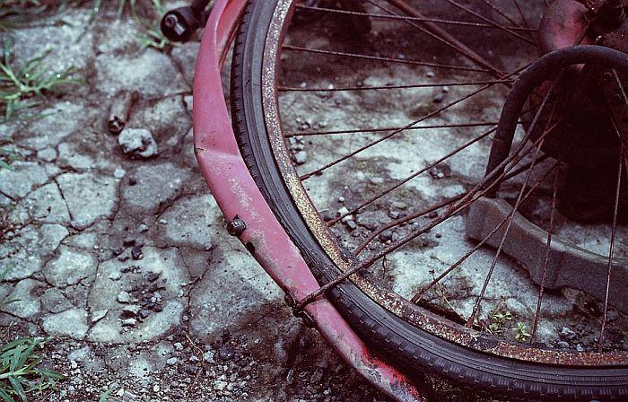 Teška nesreća u Futogu, biciklista poginuo na licu mesta